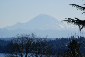 You gotta love a crisp clear day when the Mountain is out!